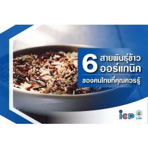 6 สายพันธุ์ ข้าวออแกนิคของคนไทยที่คุณควรรู้