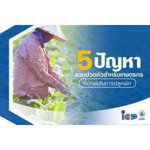 5 ปัญหาชวนปวดหัวสำหรับเกษตรกร ที่มักพบในการปลูกผัก